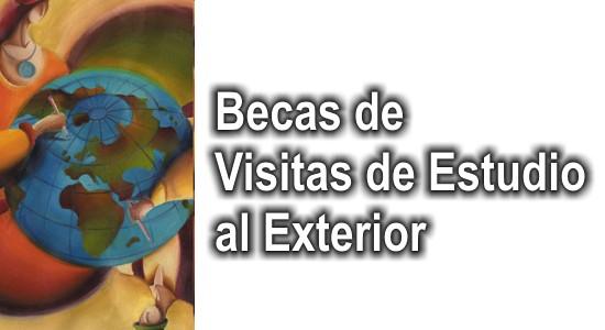Expo APICC
